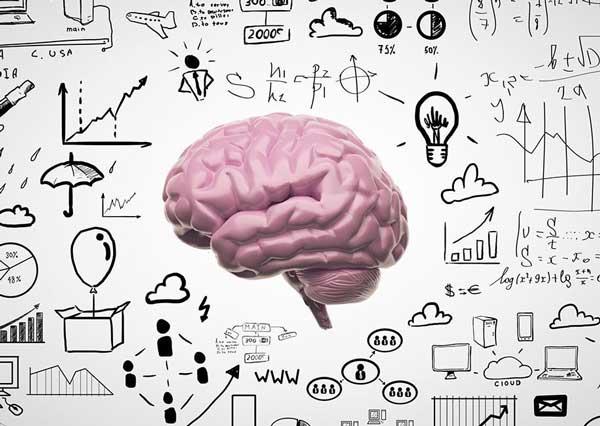 Books help Brain Function