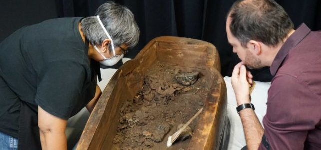 Egyptian Mummy found in Australian museum