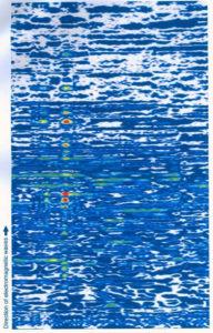 Radar scan of tut's tomb